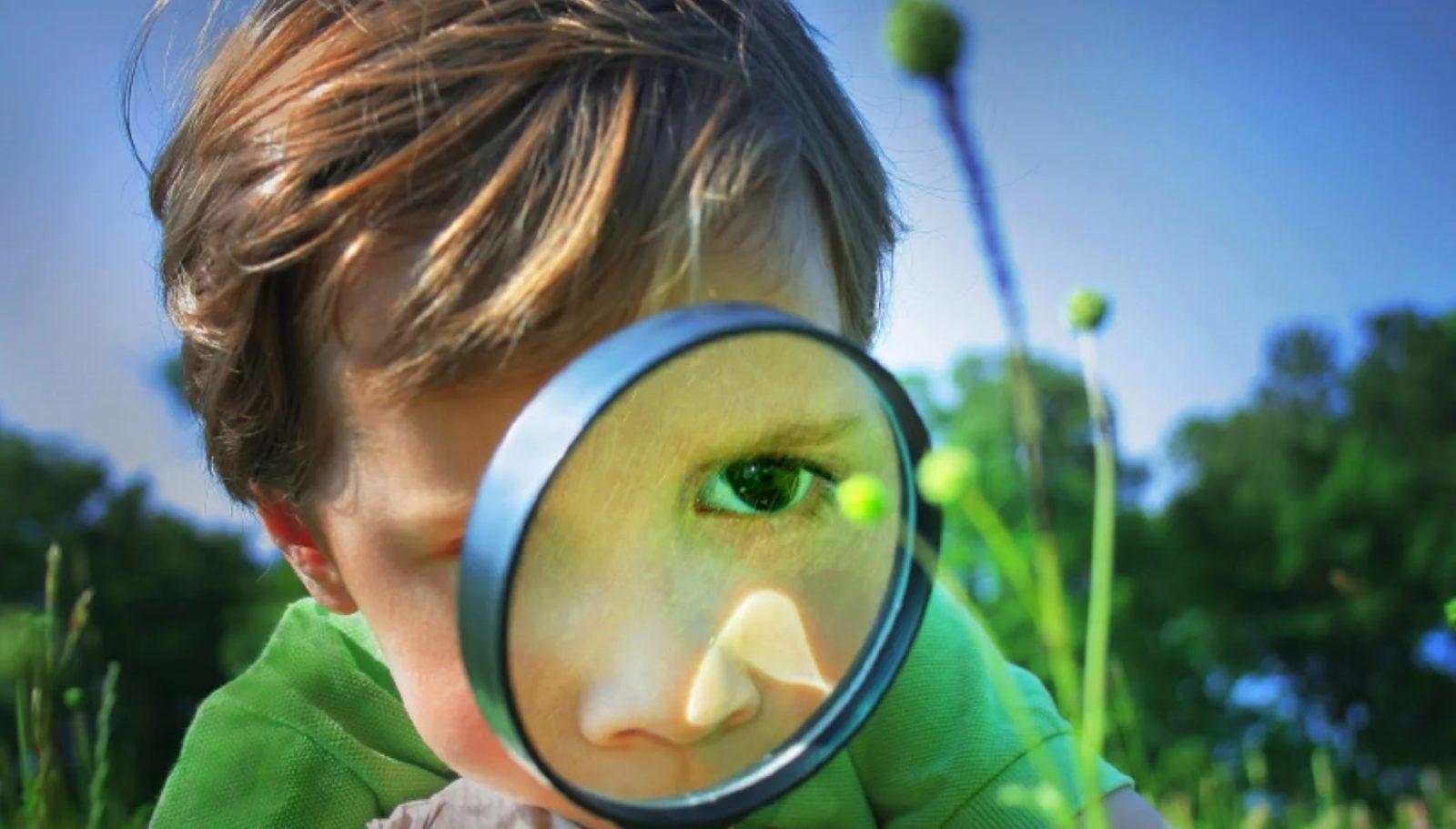 Эксперимент и наблюдение – что это и отличия